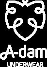 a-dam logo